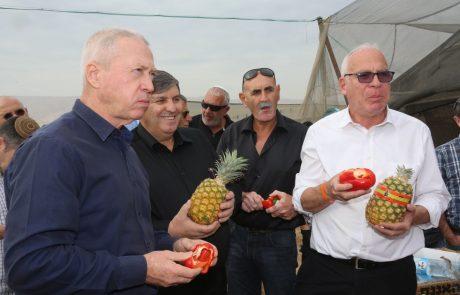 10,000 תושבים חדשים בבקעת הירדן